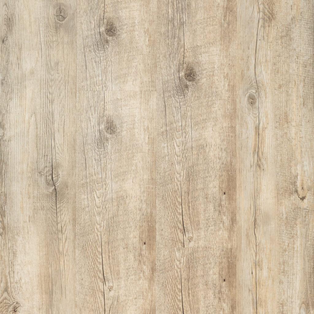 TC107 Long Pine Image